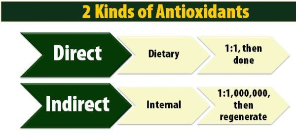 2 Kinds of Antioxidants - Direct and Indirect