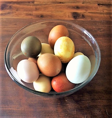 Colorful eggs in a bowl
